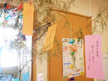 201607-tanabata3